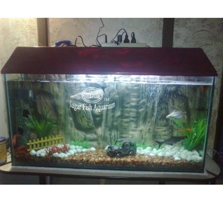 Indian Aquarium Sagar Fish Aquarium