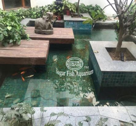 Fish Pond Sagar Fish Aquarium